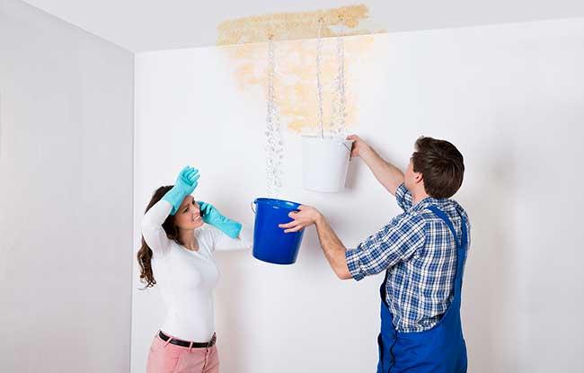 Travaux de peinture apr s un d g t des eaux - Infiltration d eau plafond assurance ...