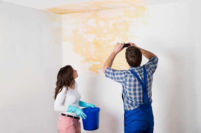 devis peinture suite dégât des eaux