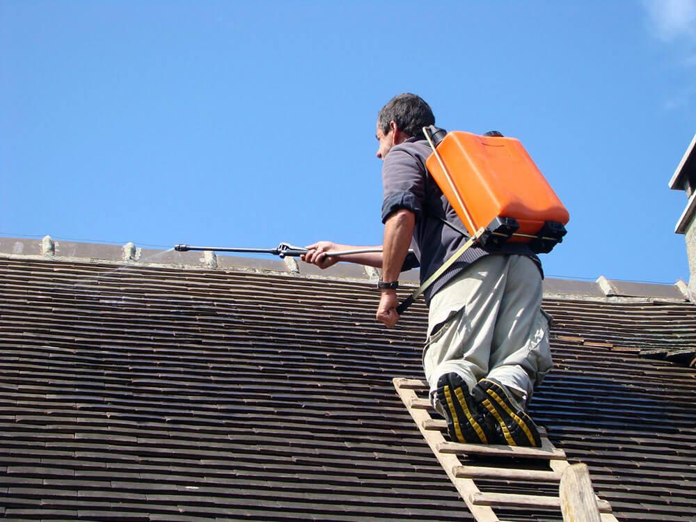 Nettoyer une toiture en ardoise - Nettoyer une semelle de fer ...