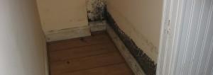 comment enlever moisissures sur les murs
