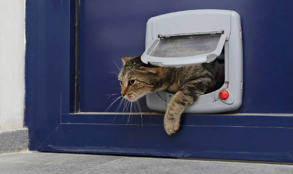 installer une chati re sur porte