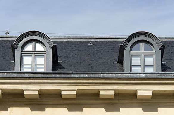 chien assis sur une toiture