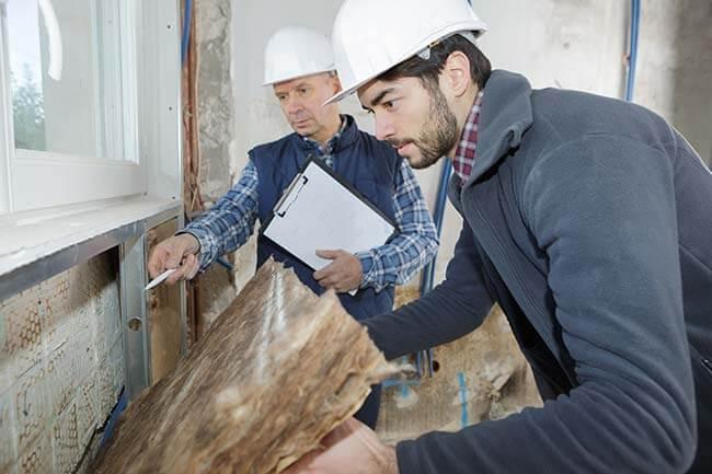 rôle expert en bâtiment