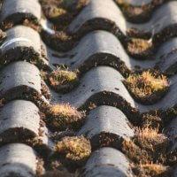 Démoussage et nettoyage de toiture : quand et comment ?