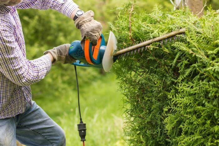 cout entretien jardin
