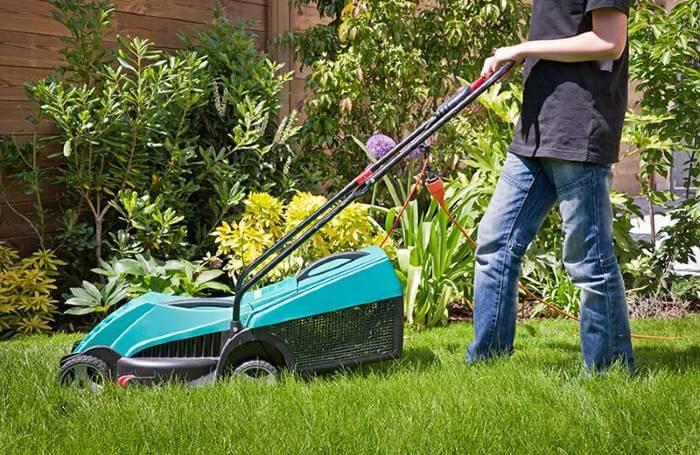 souscrire contrat entretien jardin