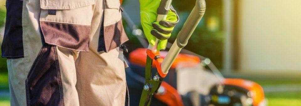 Souscrire un contrat d'entretien de jardin