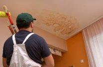 Peinture anti humidité : application et tarif des peintres