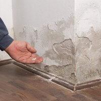 Se débarrasser de salpêtre au mur : traitements et solutions
